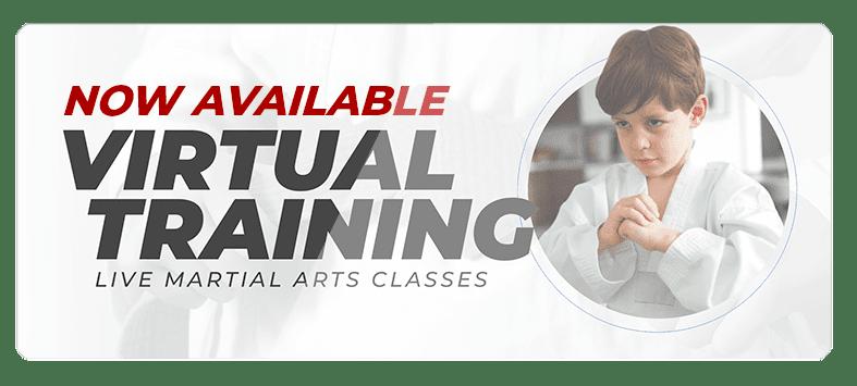 VIRTUALPOPUPSPARK.1.1, American Legacy Martial Arts
